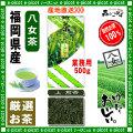 【八女茶 】 上 煎茶 ★ 〔業務用500g〕 ×2個セット ◆ 福岡県-日本茶 -厳選の緑茶