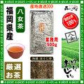 【八女茶 】 特選 ほうじ茶 ★ 〔業務用500g〕 ×2個セット ◆ 福岡県-日本茶 -厳選のお茶