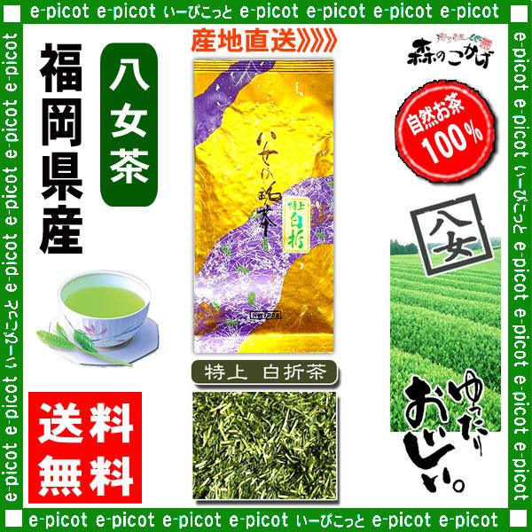 Y【送料無料】 特上 白折茶 (茎茶) ★(100g×2袋セット)≪八女茶≫ ◇ 福岡県-日本茶 -厳選の緑茶