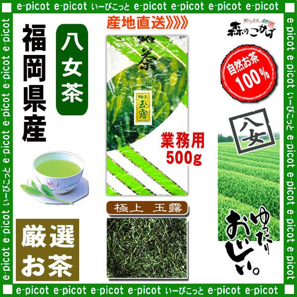 Y1【八女茶】 極上 玉露茶 〔業務用 500g〕 ◆ 福岡県-日本茶 -厳選の緑茶