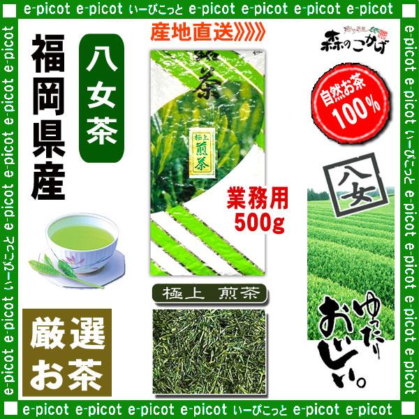Y1【八女茶】 極上 煎茶 〔業務用 500g〕 ◆ 福岡県-日本茶 -厳選の緑茶
