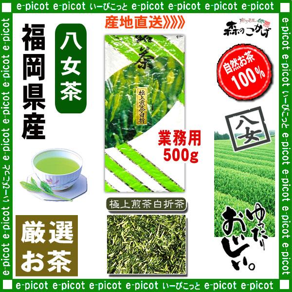 Y1【八女茶】 極上 煎茶 白折茶 (茎茶)〔業務用 500g〕 ◆ 福岡県-日本茶 -厳選の緑茶