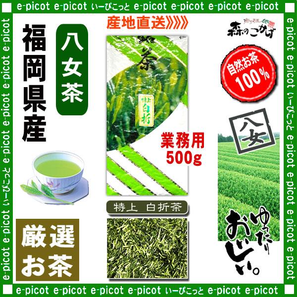 Y1【八女茶】 特上 白折茶 (茎茶)〔業務用 500g〕 ◆ 福岡県-日本茶 -厳選の緑茶