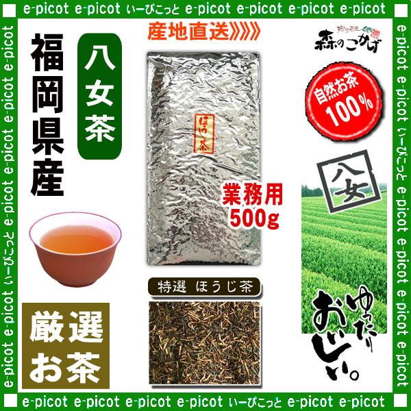 Y1【八女茶】 特選 ほうじ茶 ★ 〔業務用 500g〕 ◆ 福岡県-日本茶 -厳選のお茶