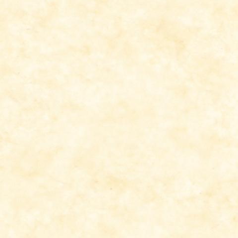 IP薄葉紙WAX カーキ