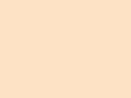 薄葉紙 アイボリー