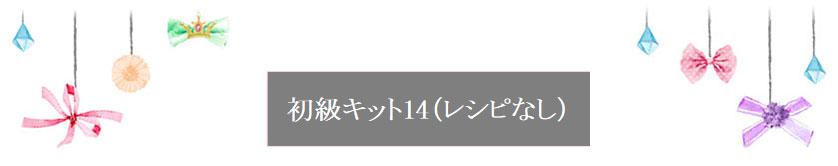 初級キット14(レシピなし)