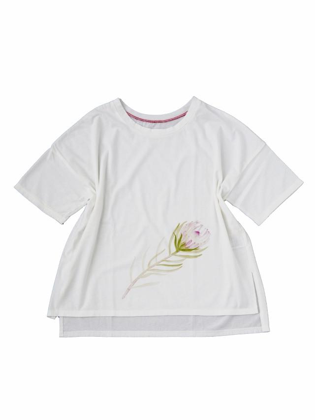 30/ソフト天竺プロテア柄プリントTシャツ