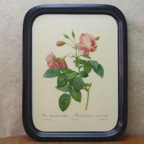 フランス ブロカント  ピンク薔薇  トレー(1950年頃)