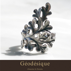 Geodesique ジィオデシック ウィーディ リング