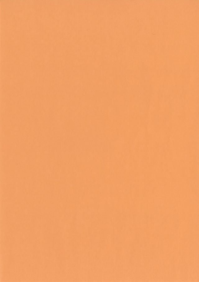大王製紙/色上質紙 オレンジ色 A/4 厚口 100枚入 【ネコポス便¥378利用OK】