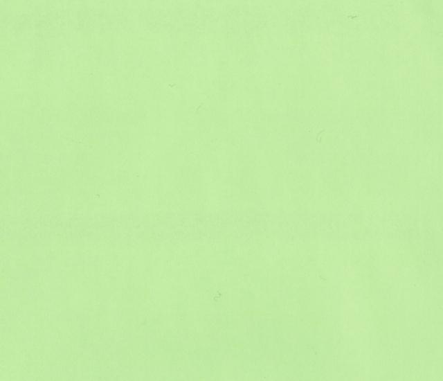 色上質紙 若草色