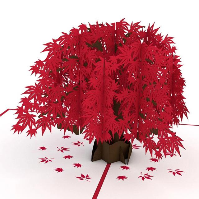 Lovepop/シングルカード/Japanese Maple