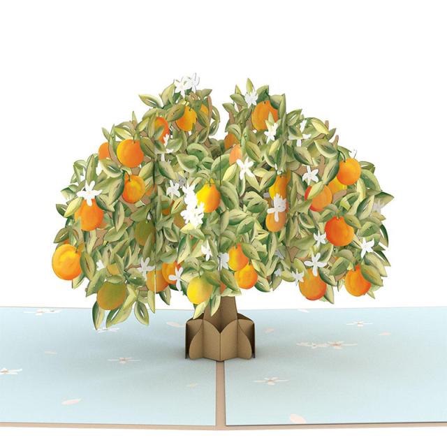 Lovepop/シングルカード/Orange Blossom Tree