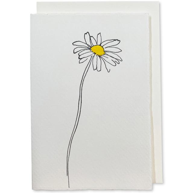 Scribble & Daub/シングルカード/Ox-Eye Daisy