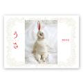 usa_hyoshi_640.jpg
