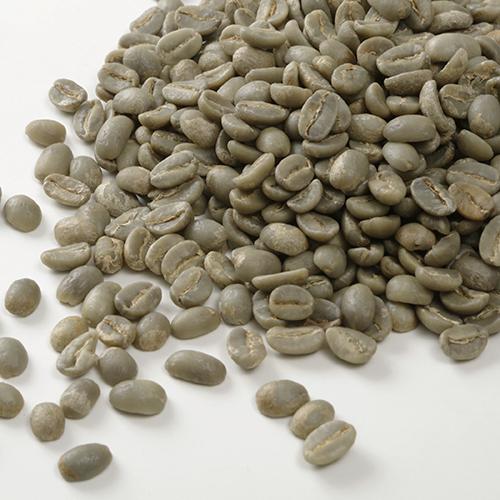 カフェ・ティモール コーヒー生豆 有機栽培(5kg未満)
