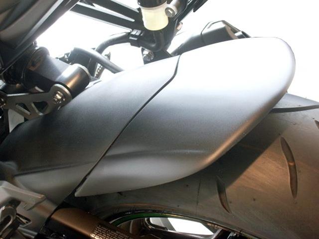 P&A International リアエクステンドフェンダー Kawasaki Z1000/Ninja1000
