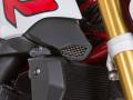 ワンダーリッヒ インテークパイプカバー BMW R1200R LC(水冷 '15-)