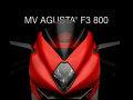 rizoma/リゾマ ミラー「ステルス/STEALTH」 MV Agusta F3