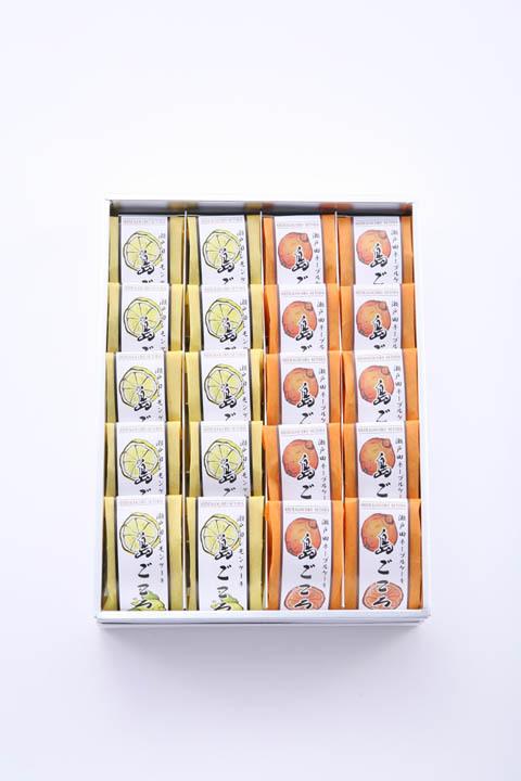 【のし対応可】20個入詰合:レモンケーキ10個ネーブルケーキ10個 (プレミアムBOX)