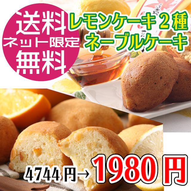 【送料無料】7/22賞味期限ケーキ3種12個セット(グリーン4個メープル4個ネーブル4個)/コンパクト便