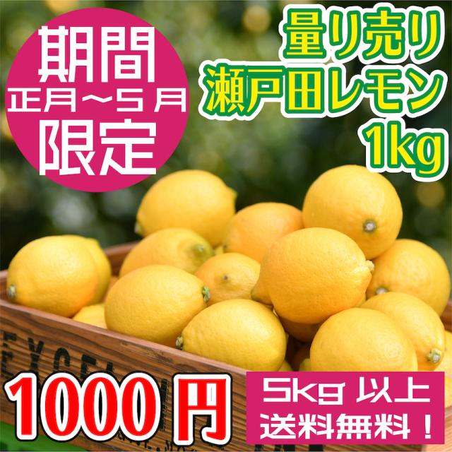 【期間限定!】量り売り瀬戸田レモン果実1kg