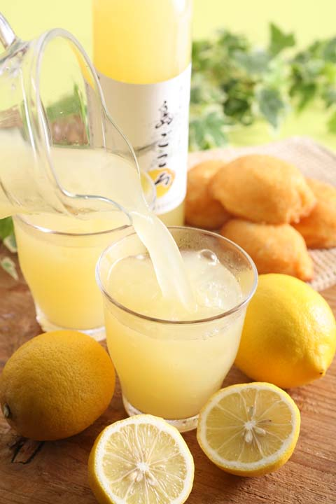 コアなレモン好きのためのレモン果汁200ml/コンパクト便