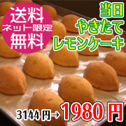 【12/8発送】当日焼きたてレモンケーキ8個セット(消費期限:製造日より3日)/コンパクト便
