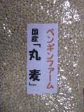 岩手県産 白丸麦 200g