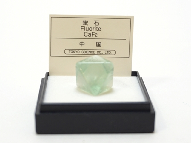 【1064】ミニ鉱物標本/蛍石/中国/ケースサイズ:4センチ角