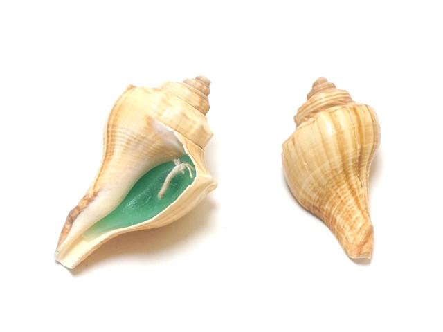 貝殻キャンドル