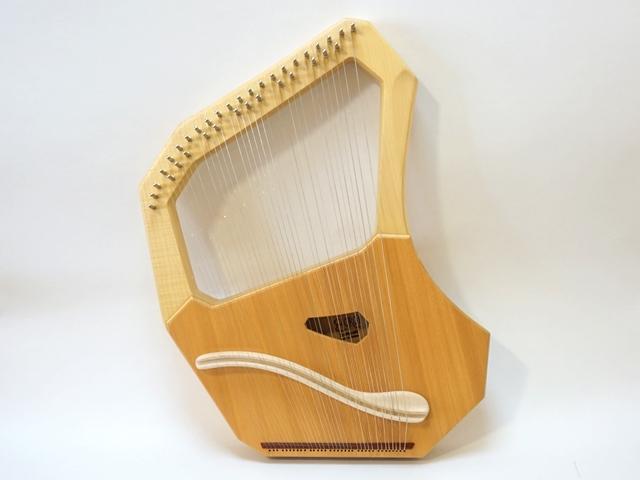 コロイソプラノ35弦ライア1