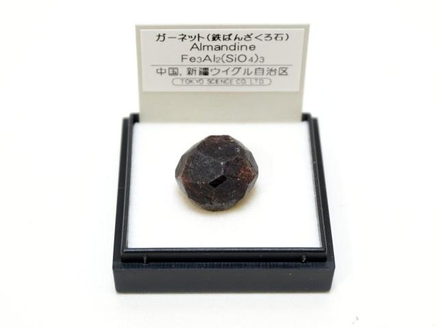 【1008-1】1月の誕生石/ガーネット/中国ウイグル自治区産/ミニ鉱物標本