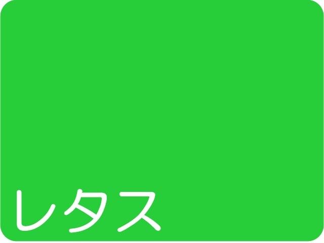 【934-6】★ローズウィンドウペーパー/単色20枚入/小/レタス