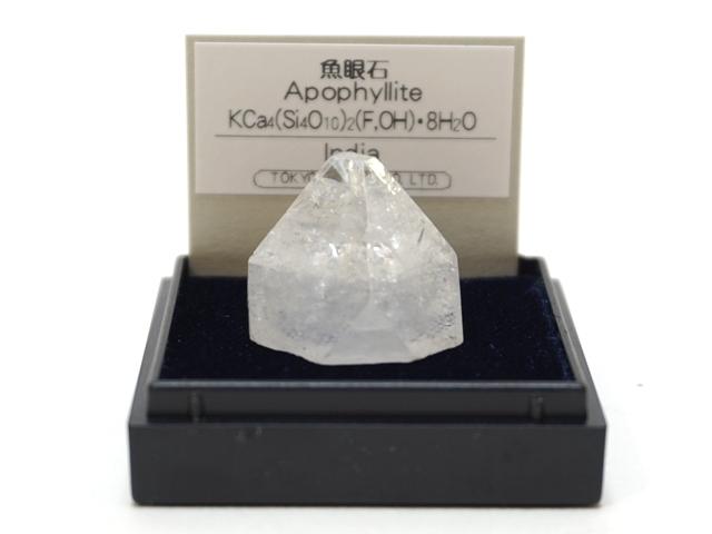【1068】ミニ鉱物標本/魚岩石/インド/ケースサイズ:4センチ角
