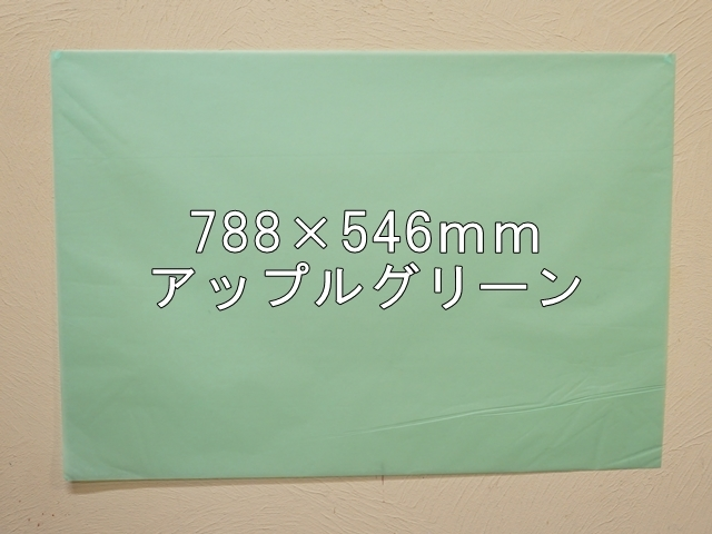 【1120-27】【特大Bサイズ】ローズウィンドウペーパー/単色5枚入/788×546mm/アップルグリーン