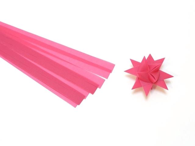 フレーベルの星 ローズ2センチ1
