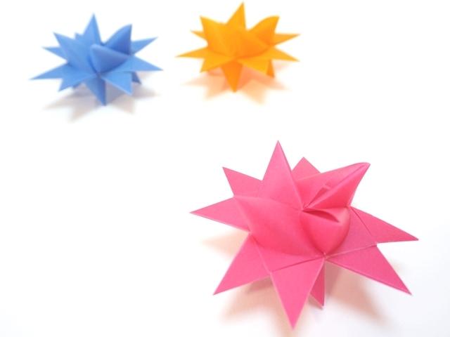 フレーベルの星 ローズ2センチ2