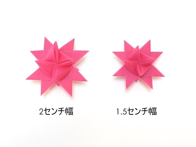 フレーベルの星 ローズサイズ比較