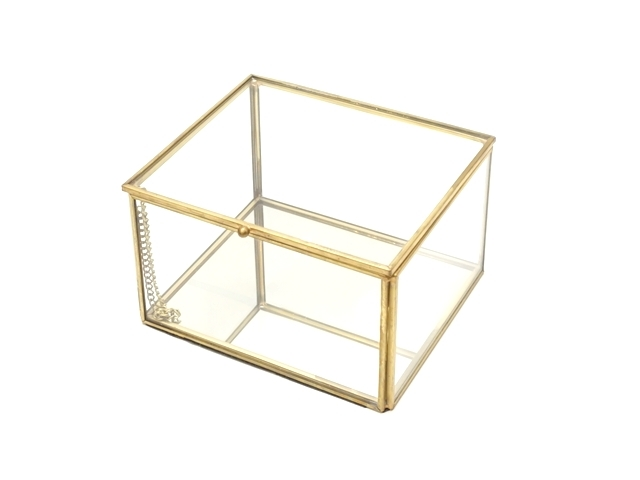 ガラスケース1