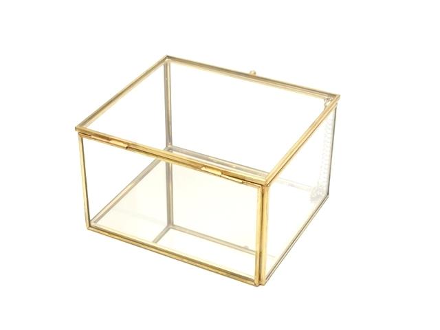 ガラスケース6