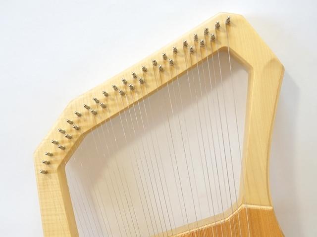 コロイソプラノ35弦ライア2