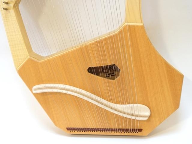 コロイソプラノ35弦ライア3