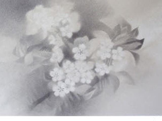 【460-14】アレキサンダー・ヴィンター/絵のギャラリー<さくら1/ドローイング >