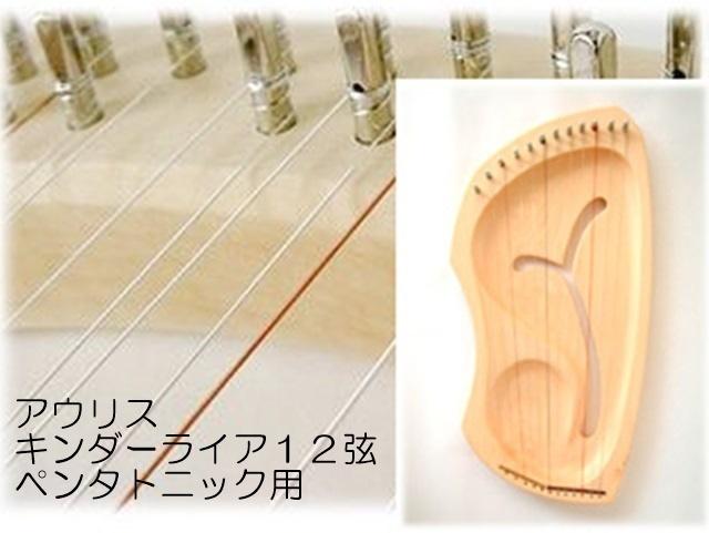 アウリスキンダーライア12弦ペンタ弦セット