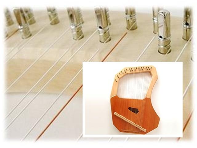 コロイ小型ソプラノ用弦