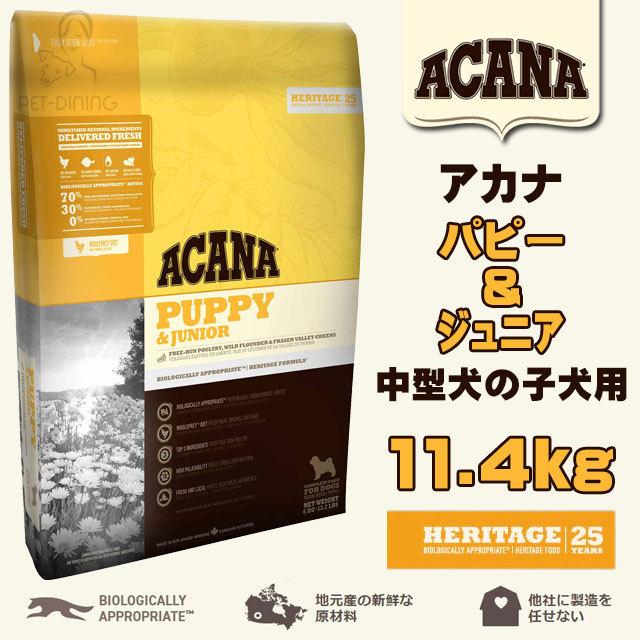 アカナ パピー&ジュニア 11.4kg
