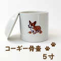 【ペット骨壷】【可愛いイラスト】 コーギー骨壷 5寸 直径約15センチ