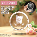 【ペット位牌】クリスタル位牌ローズサークルクリスタル送料無料ペット仏具ペット供養ガラスいはい